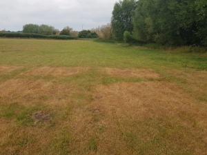 Wroxeter Roman City Scorched ground